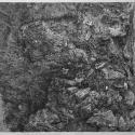 Linoryt, 52x34cm, 1990r.