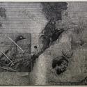 Linoryt, 45x38cm, 1995r