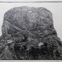 Linoryt, 33X27cm, 1990r