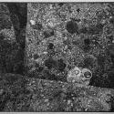Linoryt, 38,5x27,5cm, 1988r.
