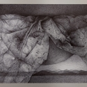 rysunek długopisem, 30x22cm